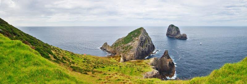 Cabo Brett, Nueva Zelanda Paisaje hermoso con la península verde y el océano en el fondo foto de archivo