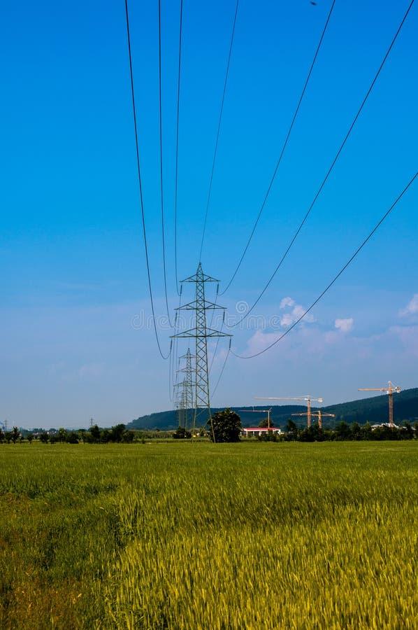 Cabo da eletricidade do poder sobre um campo fotos de stock royalty free