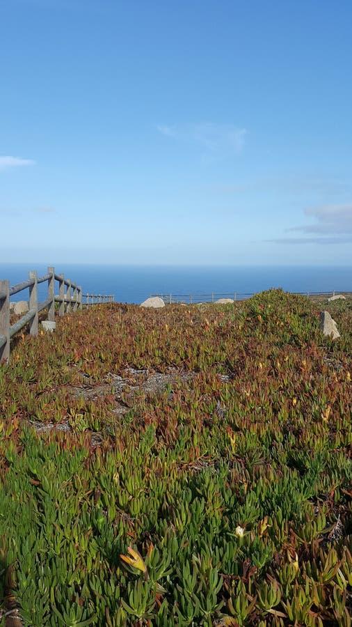 Cabo da Roca Portugalia Picture2 obraz royalty free