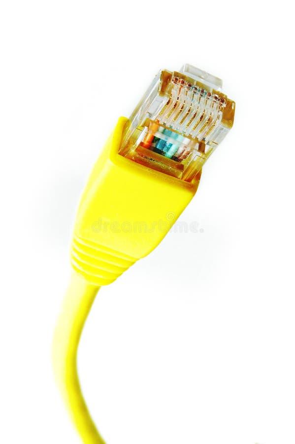 Cabo de Ethernet fotos de stock