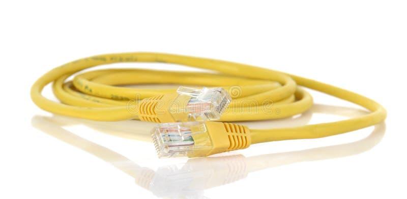 Cabo dos ethernet RJ45 da conexão de rede do LAN nos vagabundos brancos imagens de stock