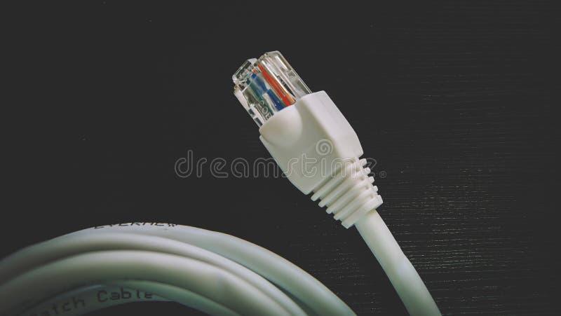 Cabo ethernet - conectores da cabeça RJ45 imagem de stock royalty free