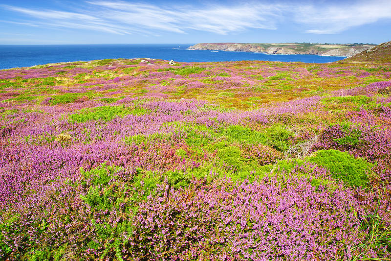 Cabo Sizun, Pointe du Raz. Brittany, France fotografia de stock royalty free