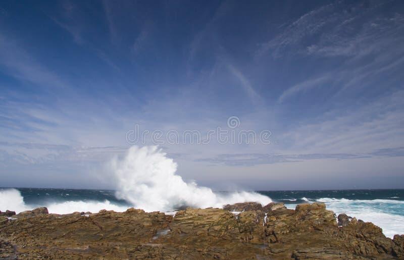 Cabo St Francis   imagem de stock royalty free