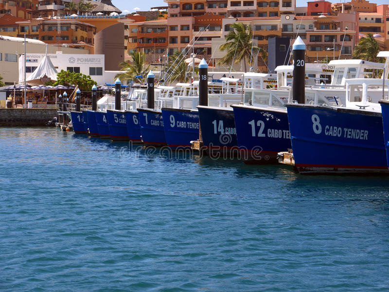 Download Cabo Tender editorial photo. Image of boat, lucas, vacation - 22962336