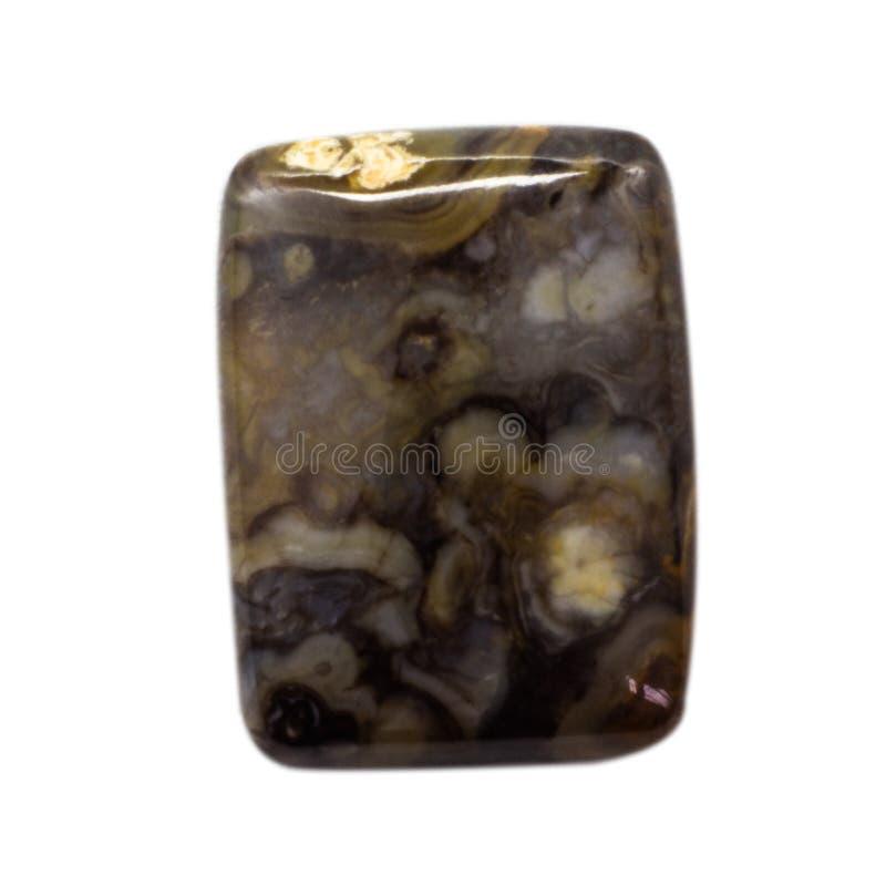 Cabochon natural do macro lustroso do cassiterite foto de stock