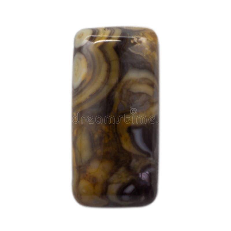 Cabochon natural do macro lustroso do cassiterite fotografia de stock royalty free