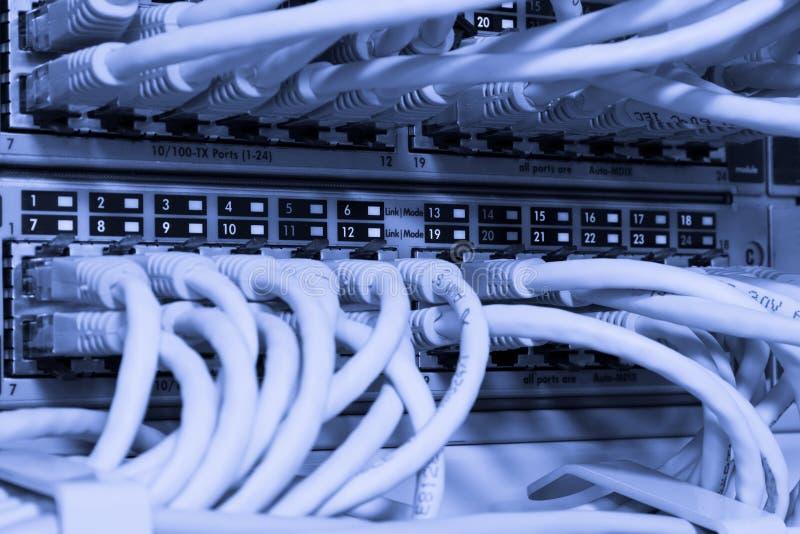 Cabos da rede conectados ao interruptor foto de stock