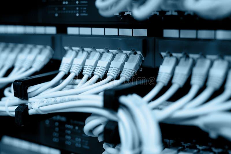 Cabos da rede conectados em interruptores de rede foto de stock royalty free