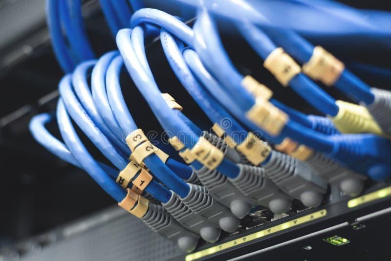 cabos da rede conectados em interruptores de rede - Data Center Conce imagens de stock royalty free