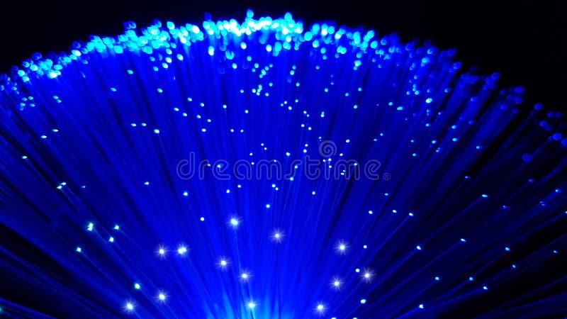 Cabos de fibra ótica azuis com pontas de brilho foto de stock royalty free