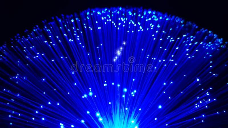 Cabos de fibra ótica azuis com pontas de brilho fotografia de stock royalty free