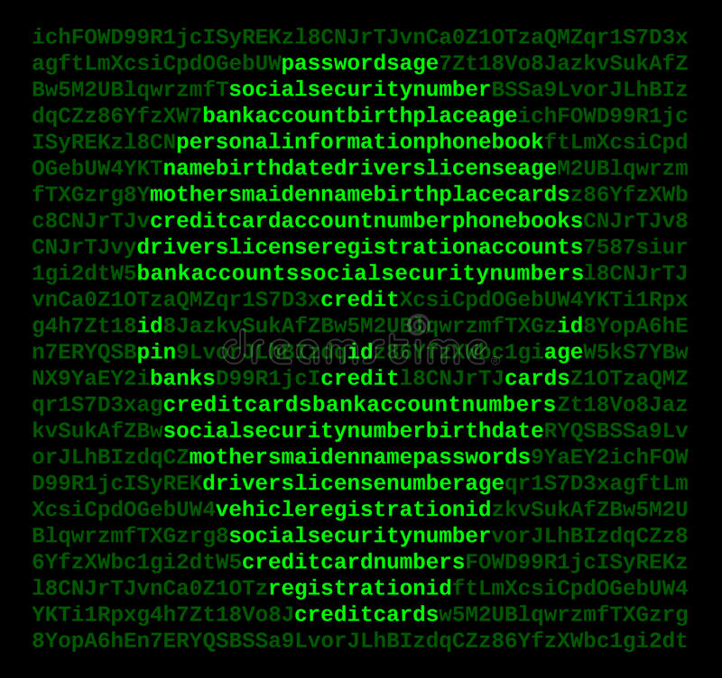 Cabouqueiro do crime do Cyber do computador ilustração do vetor