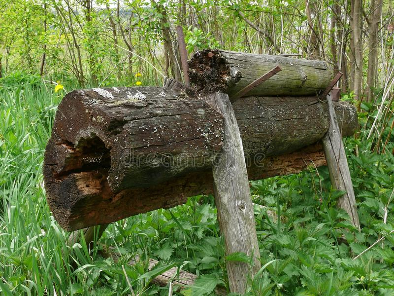 Cabra de madera foto de archivo libre de regalías