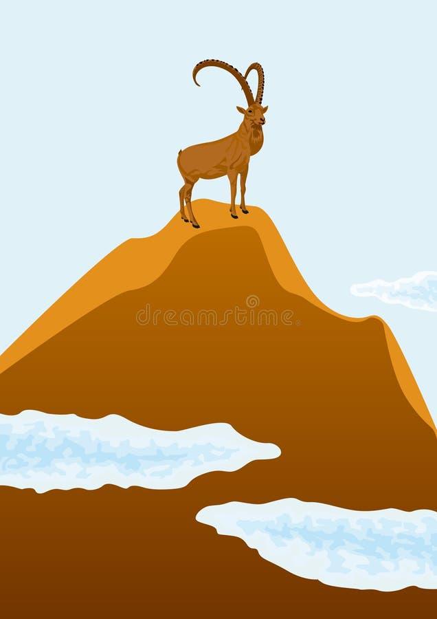 Cabra de montanha ilustração stock
