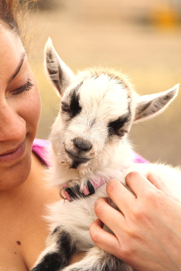 Cabra do bebê da terra arrendada da mulher fotografia de stock
