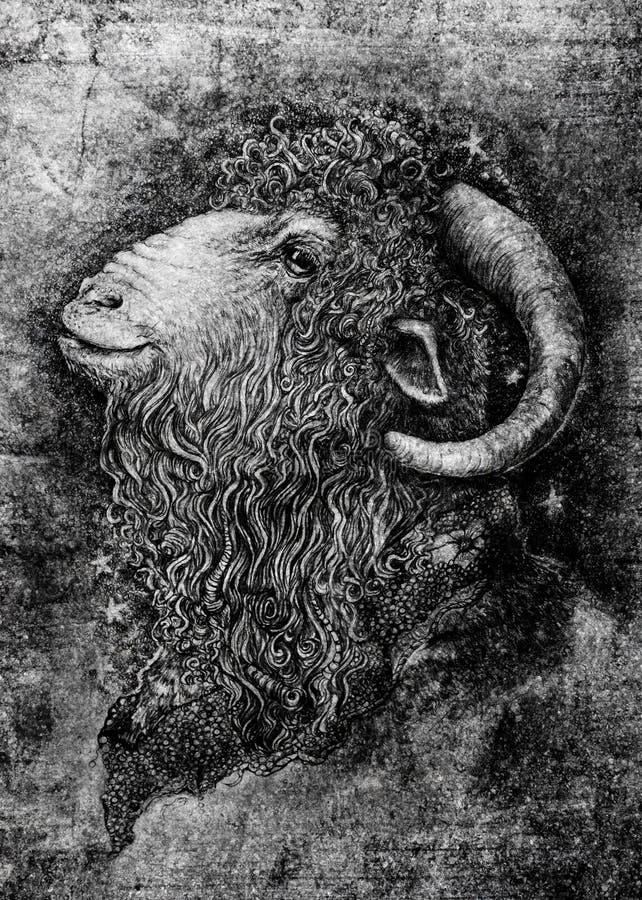 Cabra o espolón con el retrato grande de los cuernos ilustración del vector