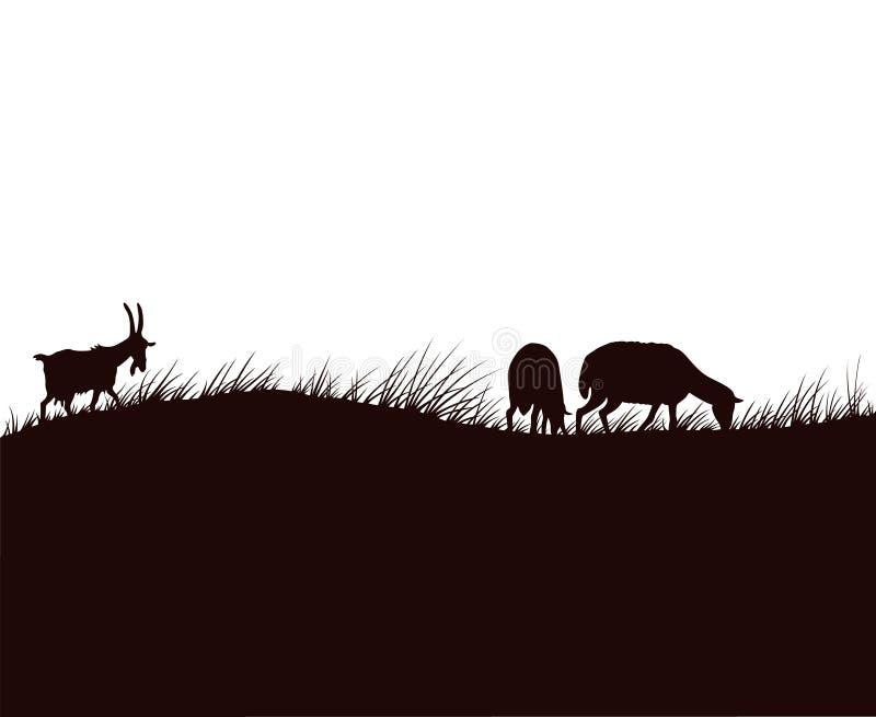Cabras e carneiros no prado ilustração do vetor