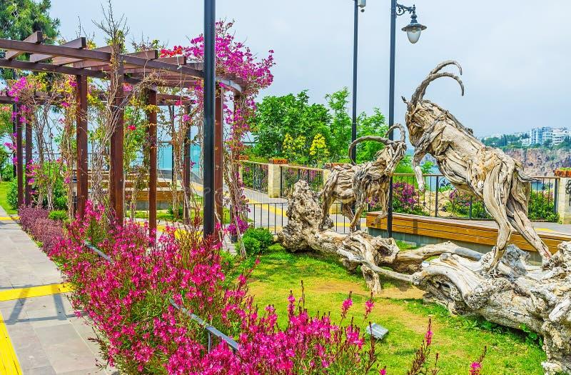 Cabras monteses entre las flores imagenes de archivo