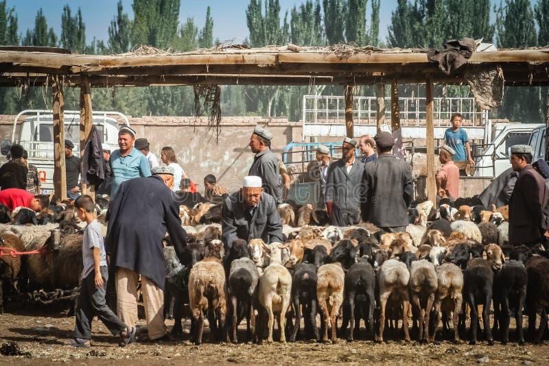 Cabras para a venda fotografia de stock