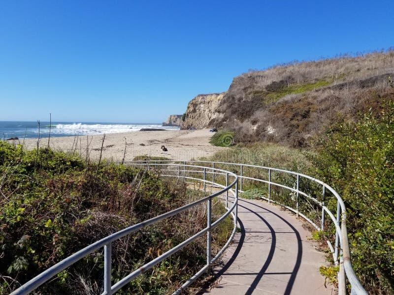 Download Cabrillo Life stock image. Image of cruz, santa, california - 103644981