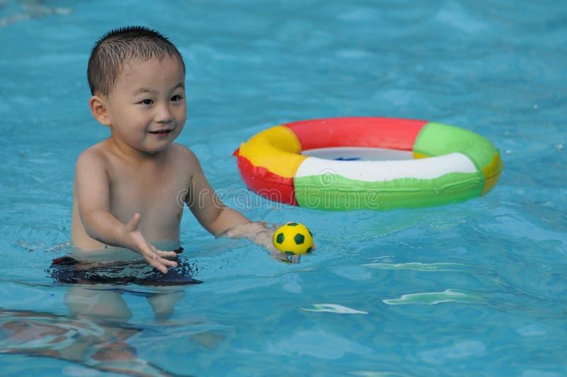 Cabrito de la natación fotos de archivo