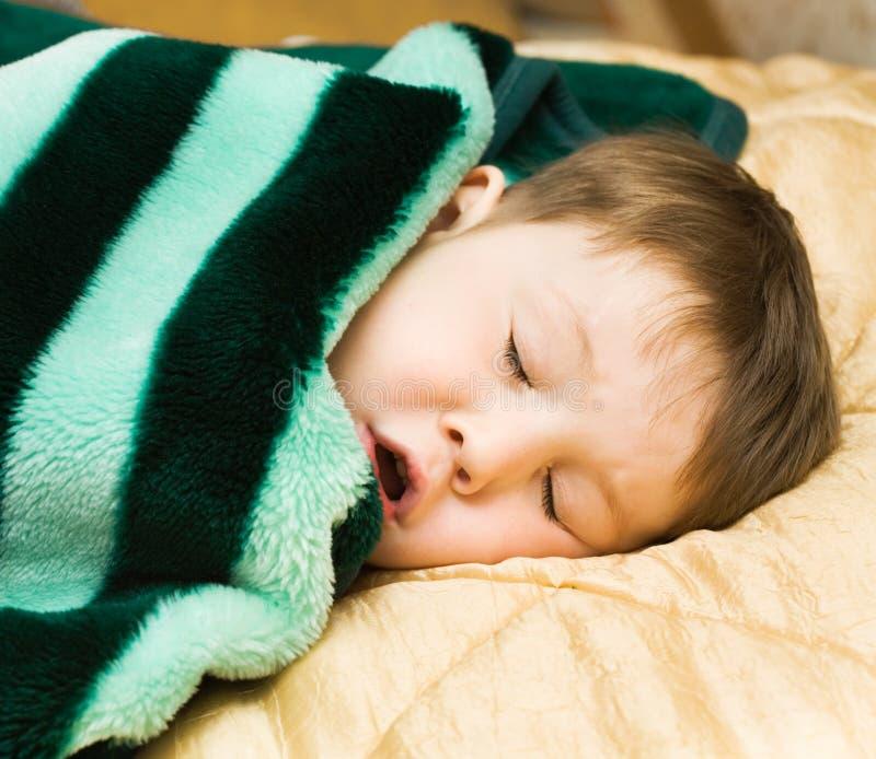 Cabrito durmiente imagenes de archivo