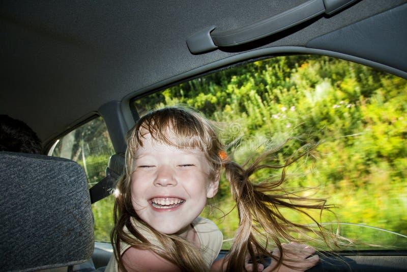 Cabrito en un viaje por carretera. fotos de archivo libres de regalías