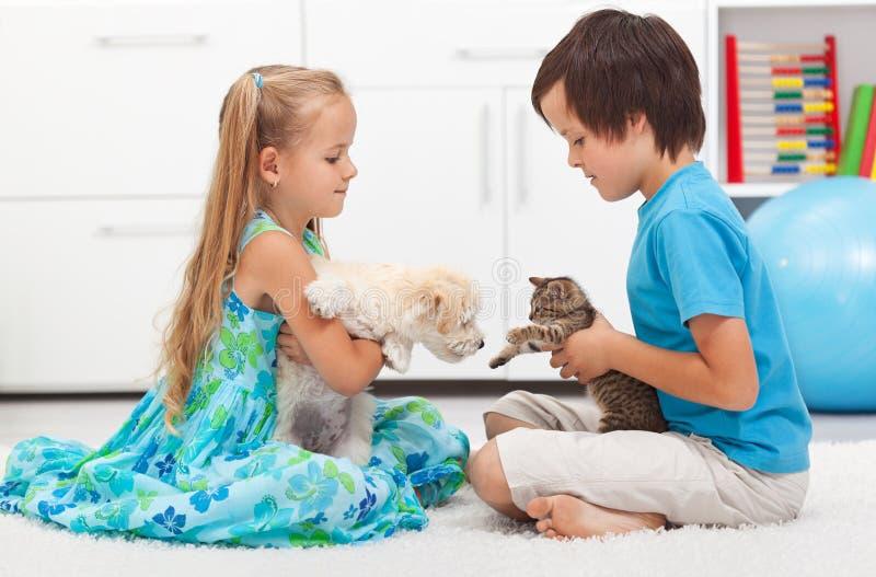 Cabritos con sus animales domésticos - perro y gato foto de archivo