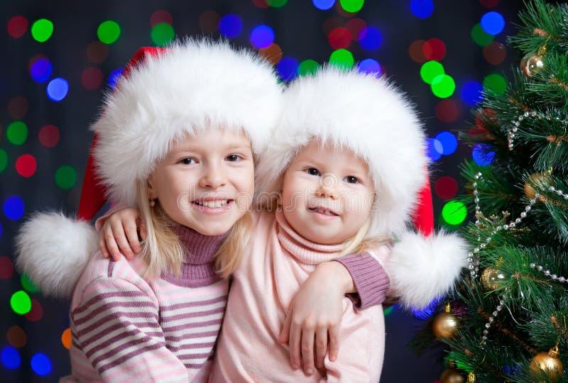Cabritos divertidos en el sombrero de Papá Noel en fondo brillante imagen de archivo