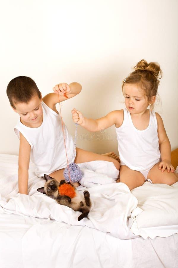 Cabritos que juegan con su gatito en la cama fotografía de archivo