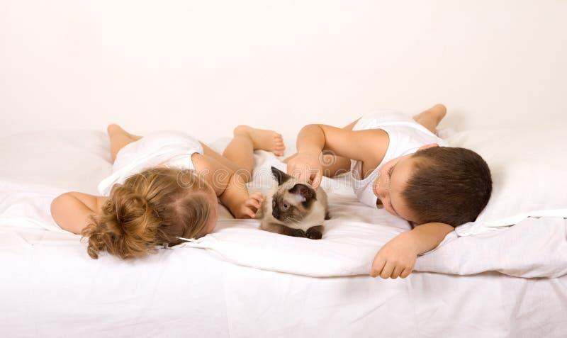 Cabritos que ponen en la cama que juega con un gato imagenes de archivo