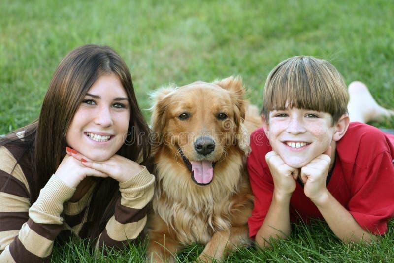 Cabritos y perro imagen de archivo