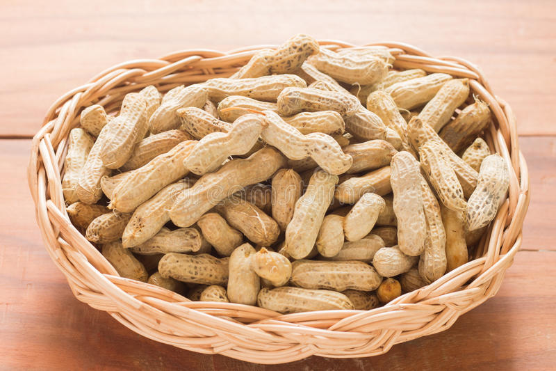 Cacahuetes hervidos imagen de archivo libre de regalías