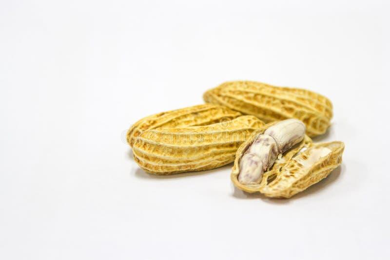 Cacahuetes hervidos y pelados en un fondo blanco imágenes de archivo libres de regalías