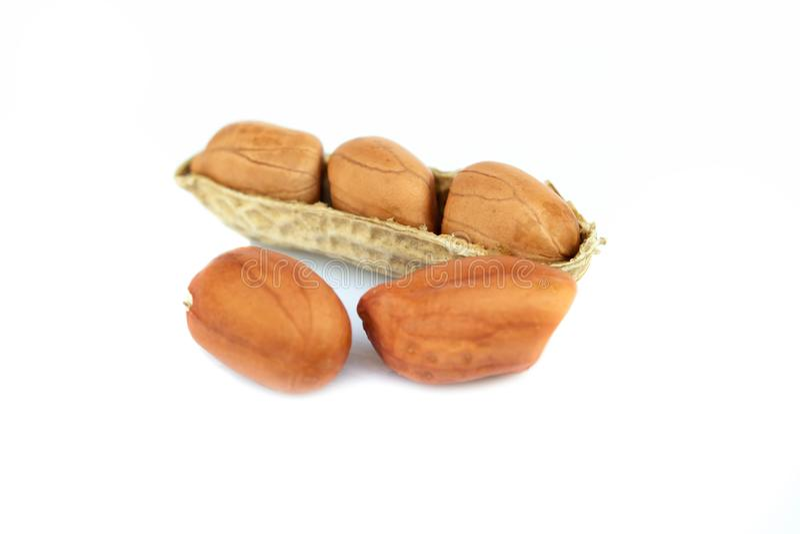 Cacahuetes secados en el fondo blanco imágenes de archivo libres de regalías