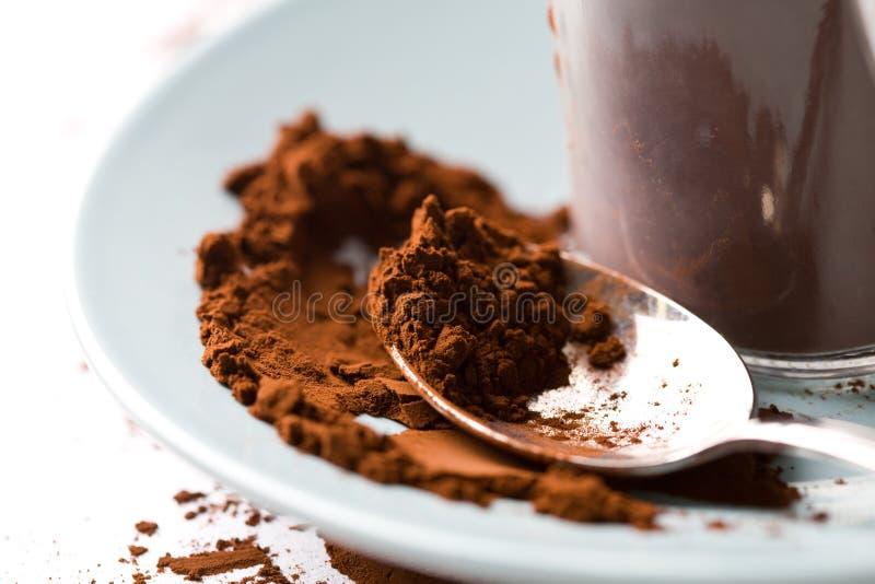Cacao photographie stock libre de droits