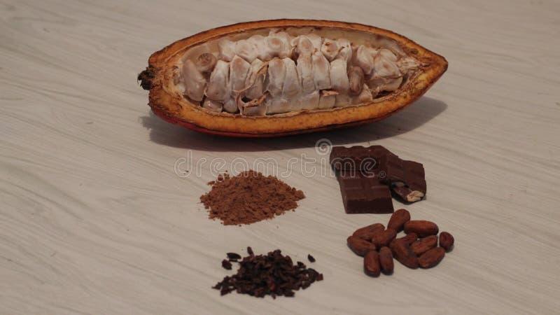 cacao imagem de stock