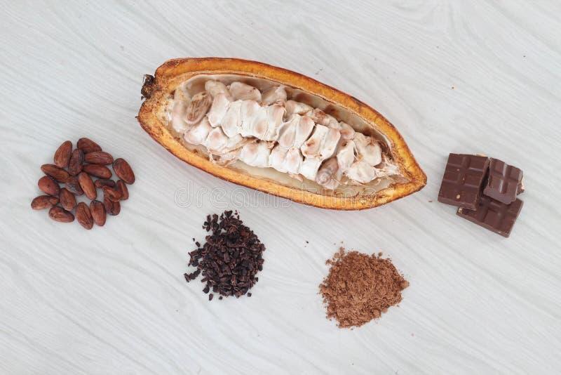 cacao imagem de stock royalty free