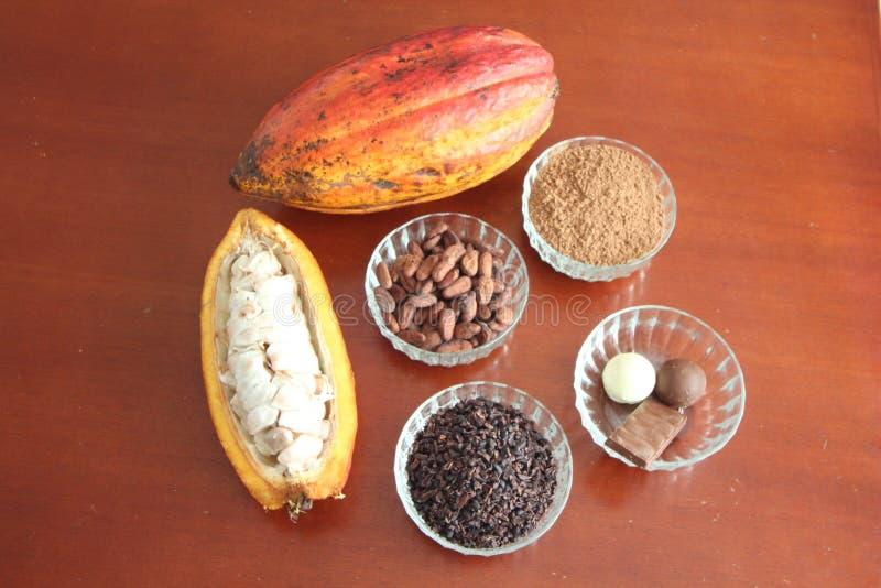 cacao fotos de stock