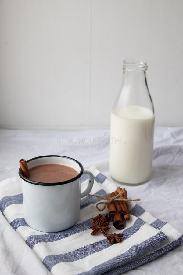 Cacao aromatizado con especias Fondo blanco fotografía de archivo libre de regalías