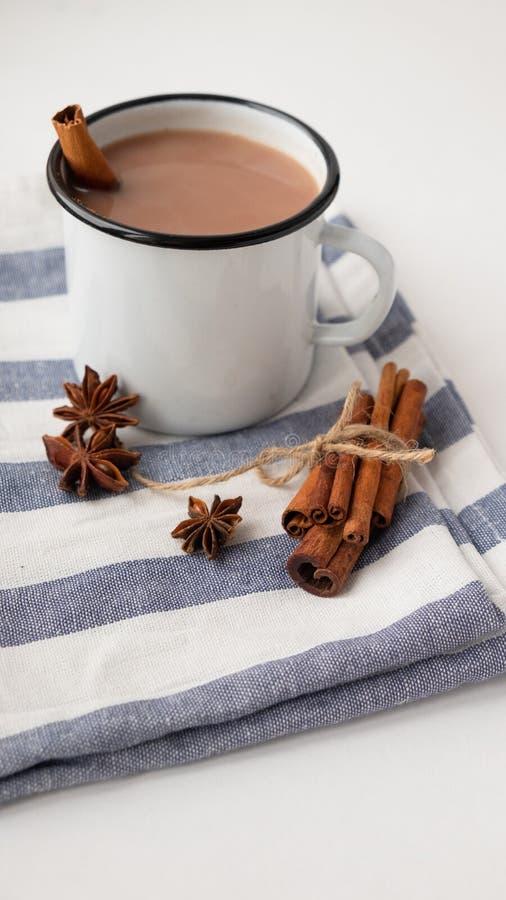 Cacao aromatizado con especias Fondo blanco fotografía de archivo