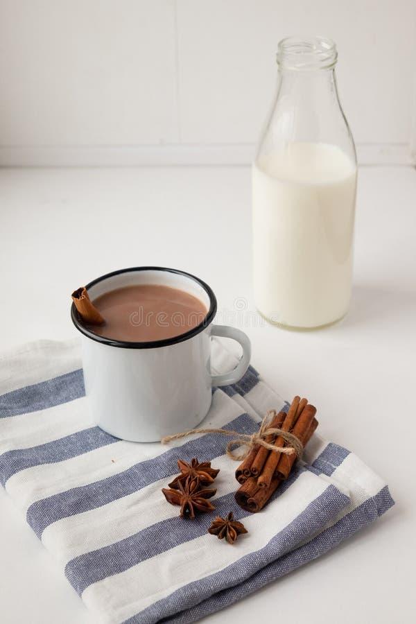 Cacao aromatizado con especias Fondo blanco foto de archivo libre de regalías