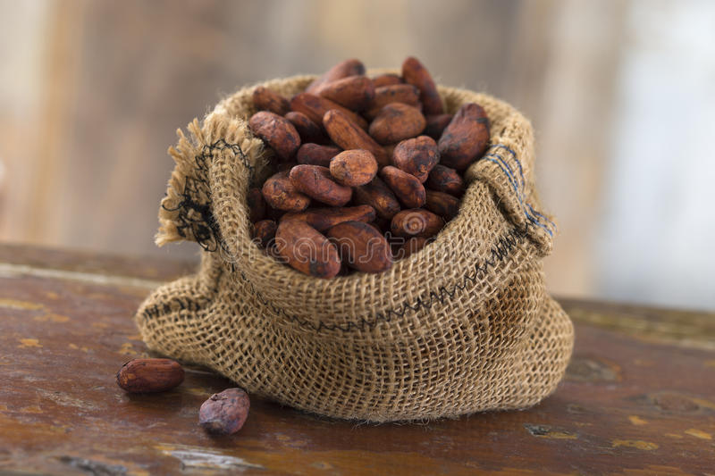 Cacao beans inside of a Hessian bag. Cacao beans in a Hessian bag on a wooden plank stock image