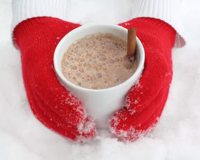 Cacao caliente imagen de archivo