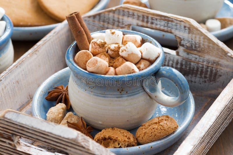 Cacao con le caramelle gommosa e molle, la cannella e le spezie su un vassoio di legno fotografie stock