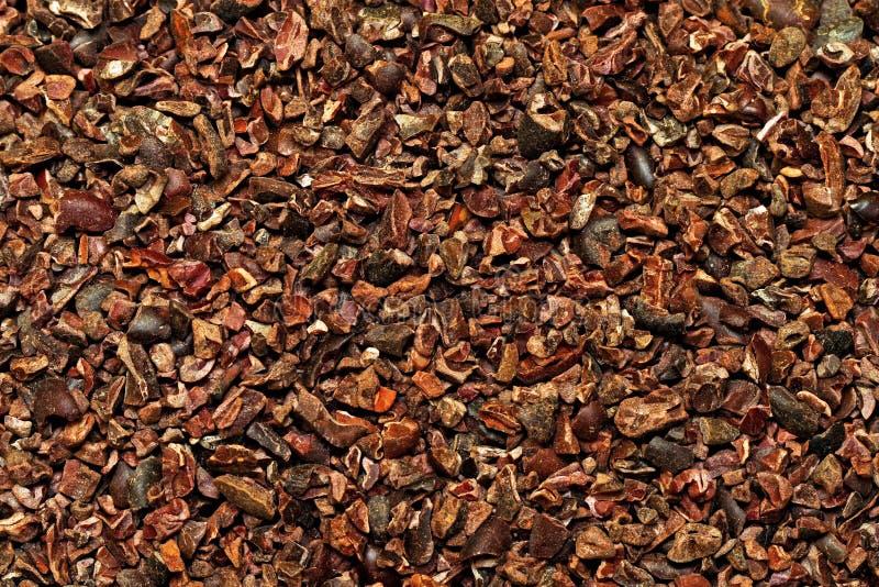 Cacao crudo foto de archivo libre de regalías