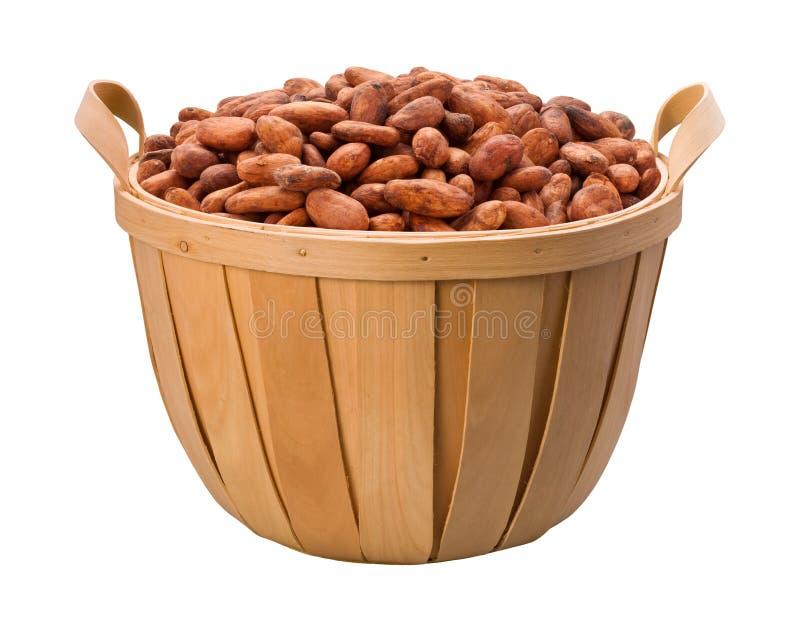 cacao d'haricot de panier photographie stock libre de droits