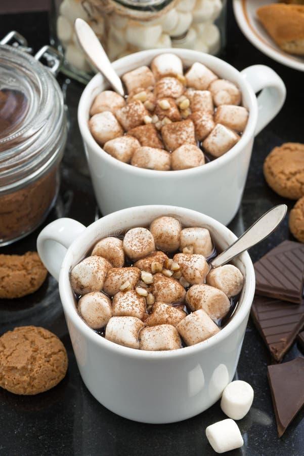 Cacao delicioso con la melcocha y las galletas, vertical, visión superior imágenes de archivo libres de regalías