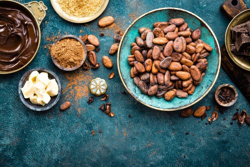 cacao Fave di cacao, bei pezzi scuri del cioccolato amaro, burro del cacao e cacao in polvere immagini stock libere da diritti